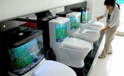 Fish toilet acquario