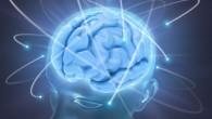 Una società di biotecnologie ha ricevuto il permesso di reclutare 20 pazienti clinicamente morti e cercare di portare in vita il loro sistema nervoso centrale. Riuscire a rianimare con successo le parti del midollo spinale superiore, dove si trova il tronco cerebrale inferiore, è una possibilità per avviare funzioni vitali […]