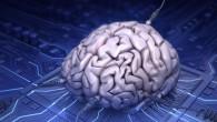 Il Professor Stephen Hawking ha predetto che una mente potrebbe essere conservata su un computer ma non con la tecnologia oggi esistente. Il cosmologo, settantunenne, ha detto che il cervello funziona in modo simile a un programma per computer, in teoria significa che potrebbe essere mantenuto in attività senza un […]