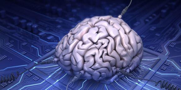 Cervello separato dal corpo - Stephen Hawking