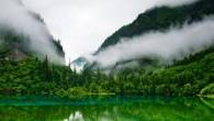 Jadav Payeng, ha attirato l'attenzione del governo, turisti e cineasti, da solo ha fatto crescere una grande foresta nel territorio di Assam (India), su un banco di sabbia nel bel mezzo del Brahmaputra, uno dei piùgrandi fiumi dell'Asia meridionale, lungo circa 2900 km. Jadav Payeng, noto tra la popolazione locale […]