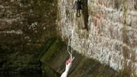 E' una tradizione secolare, quella dei cigni che vivono in acqua nel fossato, nel punto più pittoresco della contea di Somerset, addestrati, per ottenere il cibo, a tirare con il becco la corda legata a unacampanella. La storia racconta che ad iniziare la tradizione nel Palazzo del Vescovo, nel 1870, […]