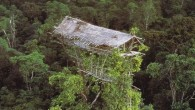 Riuscite a immaginare di vivere in una casa tra gli alberi a oltre cento metri d'altezza? Un popolo conosciuto come la tribù Korowai non ha bisogno di andare oltre l'immaginazione perché la loro vita è sempre stata vissuta in case sulla cima degli alberi. La tribù localizzata sull'isola della Nuova […]