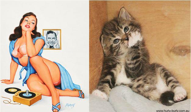Gatti in posa come ragazze pin up
