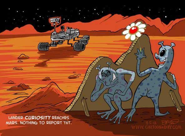 Il fiore su Marte