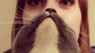 Catbearding è un terribile, terrificante meme che in questi giorni spopola su Instagram, assolutamente esilarante secondo il gusto sugli ibridi umanoidi – animali. Ecco come funziona Il catbear è semplice, bisogna tenere il viso del gatto sovrapposto al nostro in modo che la bocca dell'amico peloso sostituisce la nostra bocca, […]