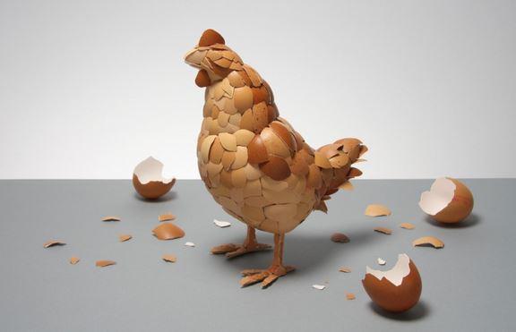 Pollo fatto con i gusci d'uovo