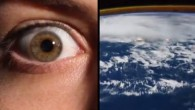 Come funziona il nostro corpo in rapporto alla Terra? Uno starnuto viaggia alla stessa velocità di un tornado. Neuroni del cervello, vasi sanguigni, i batteri della pelle, e altro ancora … comparati in questo video La superficie della nostra pelle contiene un numero di batteri, quasi quanto quello di miliardi […]
