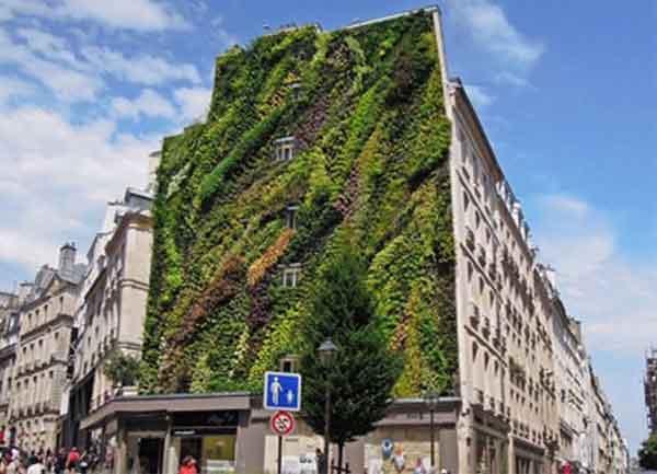 Giardino verticale di Patrick Blanc