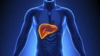 Se ti sembra di aver preso più di due centimetri e mezzo di giro vita il problema potrebbe non essere il tuo stomaco, ma un altro organo,probabilmente non è stata prestata molta attenzione al fegato, la sua salute è anche la chiave per regolare il nostro peso complessivo. Il fegato […]