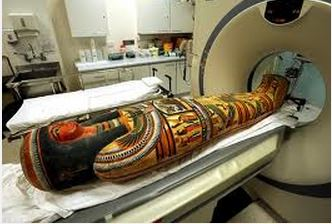 Scoperto un tatuaggio nell 39 interno coscia di una mummia for Interno coscia jill