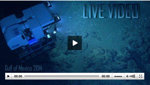 Live Video Okeanos Explorer
