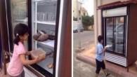 """Gulf News riporta che un uomo che vive nella città di Hail, in Arabia Saudita, ha avuto una brillante idea per nutrire le persone bisognose del suo quartiere, risparmiando loro la """"vergogna"""" di accattonaggio. L'uomo, che desidera rimanere anonimo, ha installato un frigorifero sulla strada di fronte a casa sua […]"""