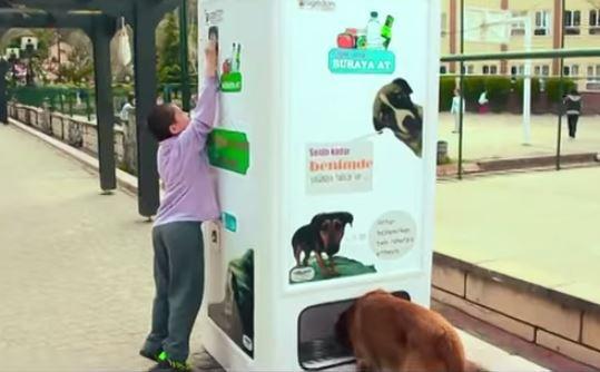 Pugedon distributore automatico cibo per cani randagi