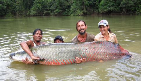 Arapaima pesce acqua dolce Amazzonia