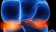 I ricercatori presso l'Università e l'Ospedale Universitario di Basilea hanno evidenziato in un rapporto che le cellule prelevate dal setto nasale sono in grado di adattarsi all'ambiente del ginocchio e possono quindi riparare i difetti della cartilagine articolare. La capacità delle cellule cartilaginee nasali di autorinnovarsi e adattarsi all'ambiente comune […]
