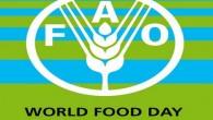In occasione della Giornata Mondiale dell'Alimentazione è stato stilato un manifesto d'intenti per risolvere la crisi alimentare globale con importanti iniziative per promuovere sistemi alimentari più sostenibili. Migliorare la distribuzione alimentare I dati delle Nazioni Unite indicano che produciamo abbastanza cibo affinché ognuno abbia un'alimentazione adeguata, ma la distribuzione non […]