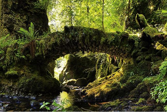 23) Fata Bridge, Scozia