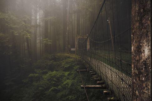 30) Ponte Foresta, Alishan Montagna, Taiwan