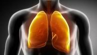 Alcune persone anche se non hanno mai fumato hanno seri problemi con i loro polmoni. Altri hanno fumato per tutta la vita, e i loro polmoni funzionano perfettamente. Come potete vedere, dipende dalla forza dell'organismo. Sei un fumatore? Sai quanto sia dannoso, eppure non puoi smettere di fumare. Se ciò […]