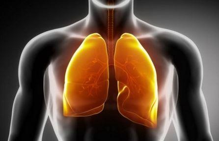 purificare i polmoni in soli tre giorni