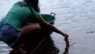 """Vi siete mai chiesti come fanno a pescare il piranha in Brasile? In questo video una ragazza mostra come con un pezzo di carne si può pescare i piranha a mani nude. E' impressionante guardare """"bollire l'acqua"""" quando i piranha divorano il pezzo di carne cruda tenuto in mano dalla […]"""