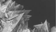 I calcoli renali sono un disturbo molto diffuso a tutte le età, un disturbo che in fase acuta – le temibili coliche – procura presumibilmente una delle esperienze più dolorose della vita. Le immagini di un calcolo renale al micoscopio elettronico a scansione come quello dell'Eastfiel College di Dallas a […]