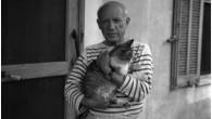 Che cosa hanno in comune Pablo Picasso, Andy Warhol, e Frida Kahlo? Tutti e tre sono annoverati tra i più famosi artisti della storia, e tutti e tre erano amanti dei gatti. Alison Nastasi artista (MFA) e giornalista di New York City, attualmente vive a Philadelphia, per il suo nuovo […]