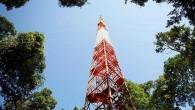 La foresta amazzonica ha un impatto straordinario sul pianeta, producendo circa la metà di tutto l'ossigeno nell'atmosfera. Ora nel suo cuore tra giaguari, serpenti e alberi giganti è stata costruita una torre di ricerca scientifica più alta della Torre Eiffel, si chiama The Amazon Tall Tower Observatory (Atto) è alta […]