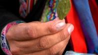 BBC News è stata tra le prime a riferire sulle intenzioni del Papa di masticare le foglie di coca per mitigare gli effetti dell'altitudine durante la sua recente visita in Bolivia. Sebbene dipinto come un viaggio radicale di un Papa radicale, la richiesta ha richiamato l'operato di dueillustri predecessori Papa […]