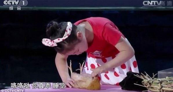Han Jiaying ipnotizza gli animali in pochi secondi