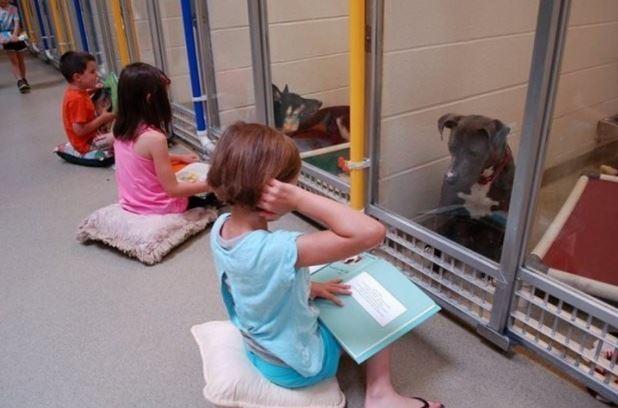 Bambini leggono libri per i cani