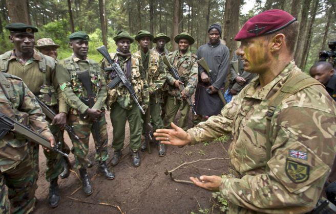 Cecchini utilizzati contro i bracconieri per proteggere i rinoceronti