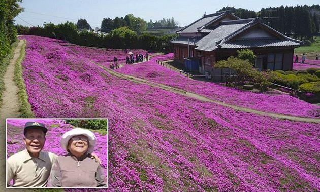 Giardino di Toshiyuki Kuroki
