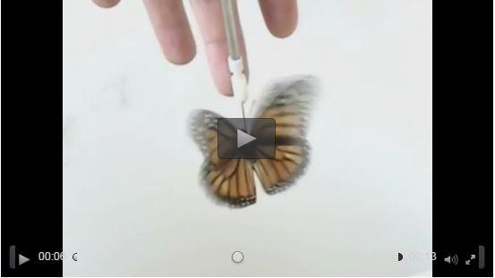 Farfalla monarca simulatore di volo