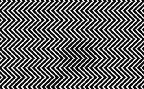 panda illusione