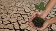 Il Medio Oriente e il Nord Africa sono già alcuni dei luoghi più caldi della Terra, a Riyadh, in Arabia Saudita per tutta l'estate le alte temperature quotidiane possono superare i 40°, purtroppo sono destinate a salire, un documento del Max Planck Istituto per la Chimica e l'Istituto di Cipro […]