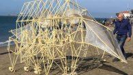 """Theo Jansen artista olandese è nato nel 1948 a Scheveningen, Paesi Bassi, ha studiato fisica presso la Delft University of Technology. Ama costruire sculture cinetiche che camminano, nuove forme di vita chiamate Strandbeest (in olandese: Strand = spiaggia; beest = bestia). I suoi """"Strandbeest"""" vivono e passeggiano sulle spiagge olandesi,per […]"""
