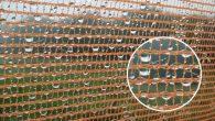 Non piove sulle dimenticate montagne del Sahara settentrionale, per l'approvvigionamento dell'acqua nei pozzi le donne devono camminare per quattro ore. I berberi di questa regione del sud del Marocco per loro fortuna hanno la nebbia, ora grazie all'antropologa marocchina Jamila Bargach e la geografa delle Canarie Maria Victoria Marzol, hanno […]