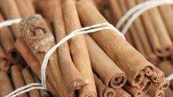 """La cannella è una spezia aromatica, ricca di gusto e proprietà terapeutiche, ci sono due tipi di cannella la Cinnamomum verum, che significa """"vera cannella"""", e quella un po' ingannevole, venduta come """"cannella"""", chiamata Cinnamomum cassia. Entrambe le spezie hanno aspetto, odore e sapore simile ma non allo stesso modo. […]"""