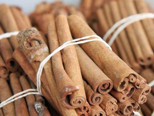 cannella Cinnamomum verum