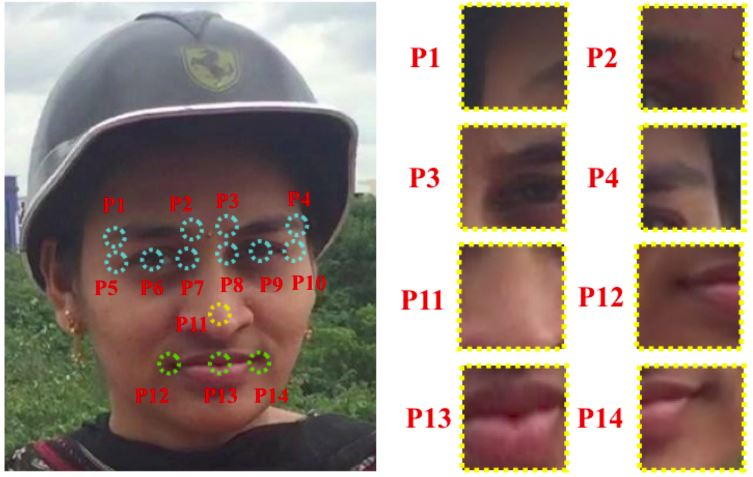 Face Identification Disguised (DFI)