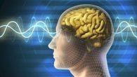 Luigi Gallimberti, specializzato in Psichiatria e Tossicologia, in un promettente progetto di ricerca sul trattamento della dipendenza da cocaina(collabora con il National Institute on Drug Abuse NIDA di Bethesda-Washington, con la Feinberg School of Medicine-Northwestern University di Chicago e con il National Institute of Health NIH), ha utilizzato la stimolazione […]