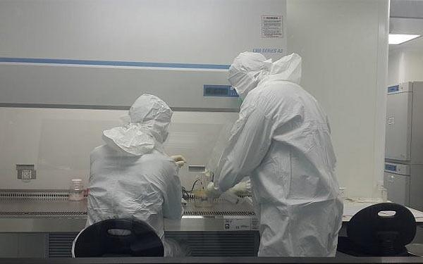 Bonus BioGroup ricrescita ossa in laboratorio