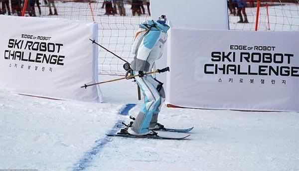 Ski Robot Challenge