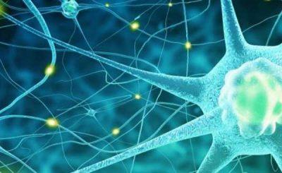 Parkinson trattamento giapponese
