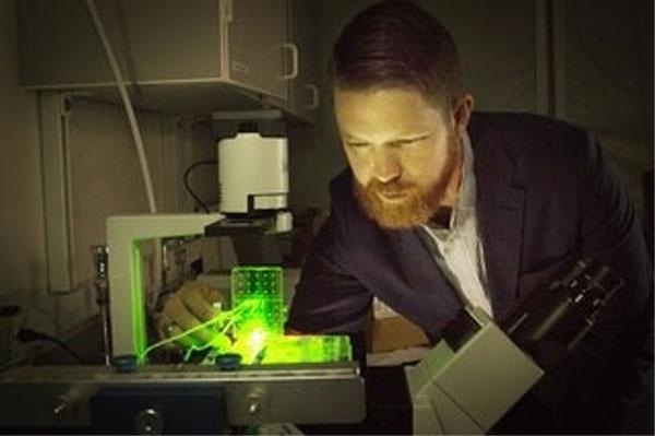 Processo di stampa 3D crea legamenti e tendini