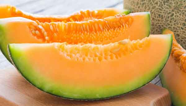 Melone vitamina B