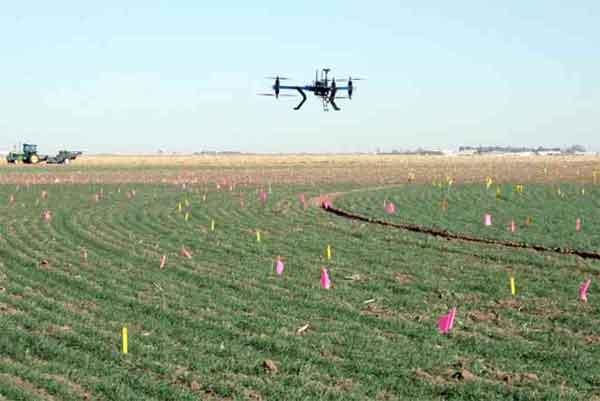 Drone semina alberi