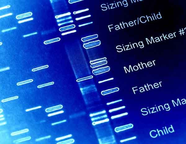 Coronavirus Covid-19 mutazioni genetiche